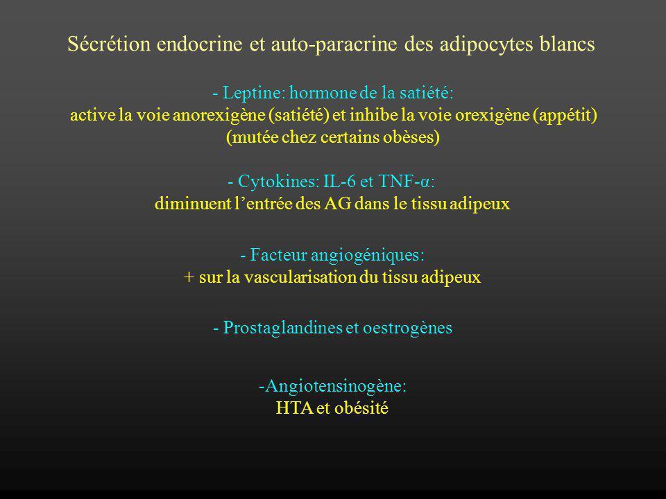 Sécrétion endocrine et auto-paracrine des adipocytes blancs - Leptine: hormone de la satiété: active la voie anorexigène (satiété) et inhibe la voie o