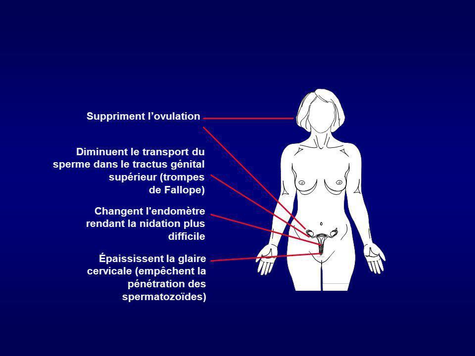 Les progestatifs microdosés Les micropilules au levonorgestrel( Microval ) - Inhibition de l ovulation dans 50% des cas, diminution de la perméabilité aux spermatozoïdes,déphasage de l endomètre troublant la nidation, ralentissement de l œuf dans la trompe -Prise quotidienne, même pendant les règles, très méticuleusement car l efficacité peut être perdue 27 h après la dernière dose Les troubles des règles sont la principale cause d arrêt ; kystes fonctionnels ovariens, GEU (?) -Efficacité: 0,5 à 3 % AF Le désogestrel 75µg en continu ( Cérazette) - suppression de l ovulation dans 100 % des cas -20 % d aménorrhée, 30 % moins de 2 épisodes de saignements/trimestre, 40 % 3 à 5 épisodes, 10 % plus de 6