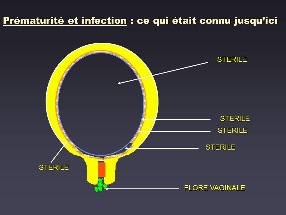 Vaginose bactérienne et issue de grossesse Leitich et al, Am J Obstet Gynecol 2003,189:139-47 avant 16 SA 7.5 [1.8 - 31.6] avant 20 SA 4.2 [2.1 - 8.4] après 20 SA 1.5 [1.29 - 1.82] Prématurité < 37 SA Dépistage Association dautant plus forte que présence plus précoce au cours de la grossesse