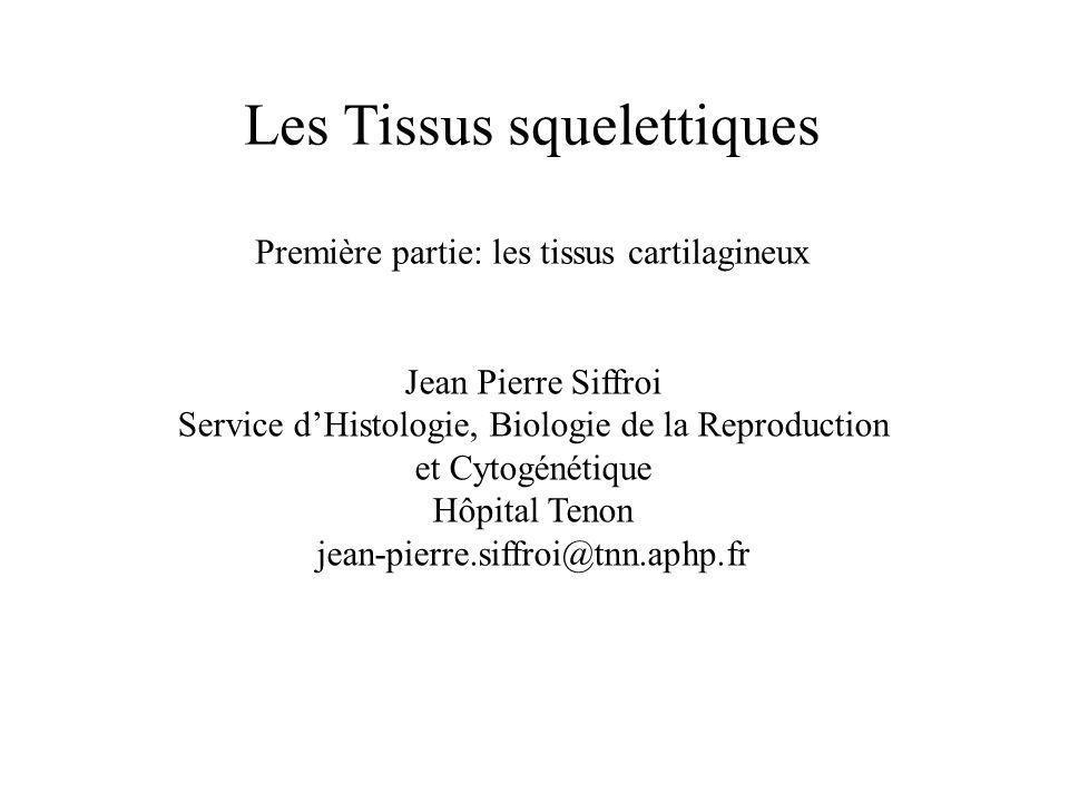 Les Tissus squelettiques Première partie: les tissus cartilagineux Jean Pierre Siffroi Service dHistologie, Biologie de la Reproduction et Cytogénétiq