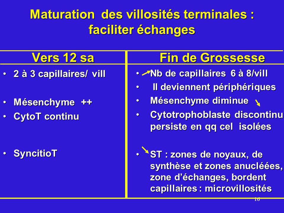 16 Maturation des villosités terminales : faciliter échanges Vers 12 sa 2 à 3 capillaires/ vill2 à 3 capillaires/ vill Mésenchyme ++Mésenchyme ++ CytoT continuCytoT continu SyncitioTSyncitioT Fin de Grossesse Nb de capillaires 6 à 8/vill Il deviennent périphériques Mésenchyme diminue Cytotrophoblaste discontinu persiste en qq cel isolées ST : zones de noyaux, de synthèse et zones anucléées, zone déchanges, bordent capillaires : microvillosités