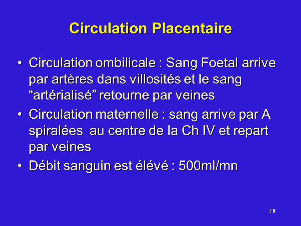 18 Circulation Placentaire Circulation ombilicale : Sang Foetal arrive par artères dans villosités et le sang artérialisé retourne par veinesCirculation ombilicale : Sang Foetal arrive par artères dans villosités et le sang artérialisé retourne par veines Circulation maternelle : sang arrive par A spiralées au centre de la Ch IV et repart par veinesCirculation maternelle : sang arrive par A spiralées au centre de la Ch IV et repart par veines Débit sanguin est élévé : 500ml/mnDébit sanguin est élévé : 500ml/mn