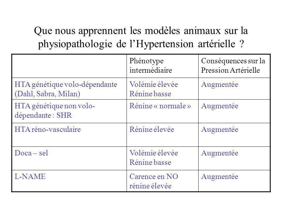 Que nous apprennent les modèles animaux sur la physiopathologie de lHypertension artérielle ? Phénotype intermédiaire Conséquences sur la Pression Art