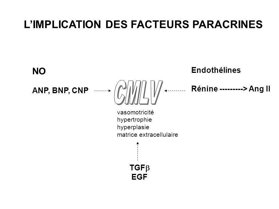 vasodilatateursvasoconstricteurs Facteurs de croissance NO ANP, BNP, CNP Endothélines Rénine ---------> Ang II TGF EGF LIMPLICATION DES FACTEURS PARAC