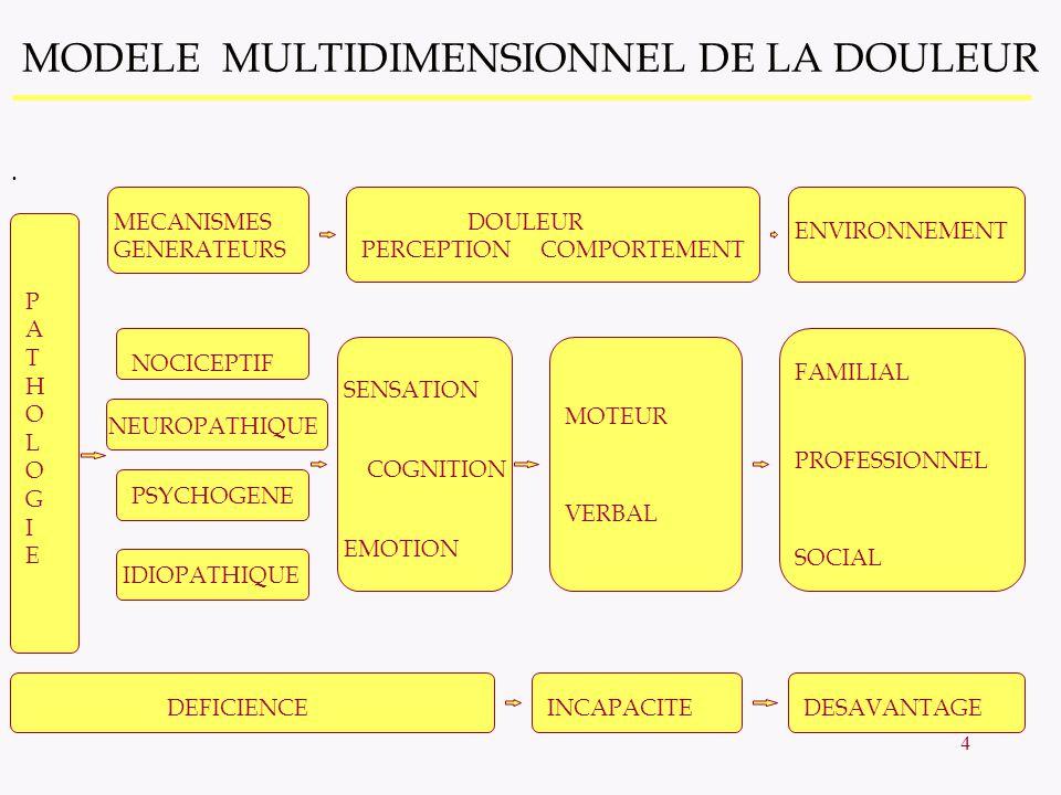 5 NIVEAUX DEVALUATION La (ou des) causes de la douleur Mécanisme(s) de la douleur Intensité de la douleur perçue Dimension affective-émotionelle Impact sur les capacités fonctionnelles et la qualité de vie Contexte psychologique, familial, socio-professionnel