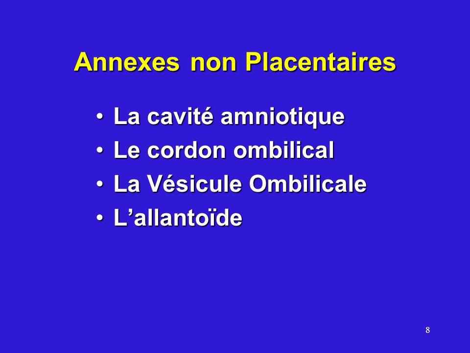 8 Annexes non Placentaires La cavité amniotiqueLa cavité amniotique Le cordon ombilicalLe cordon ombilical La Vésicule OmbilicaleLa Vésicule Ombilical