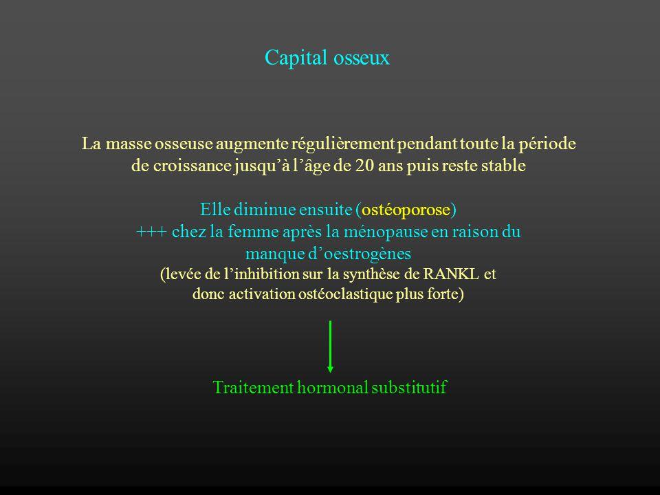 Capital osseux La masse osseuse augmente régulièrement pendant toute la période de croissance jusquà lâge de 20 ans puis reste stable Elle diminue ens