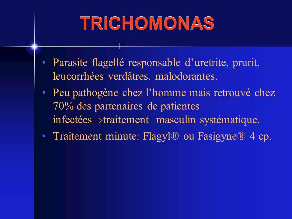 TRICHOMONAS Parasite flagellé responsable duretrite, prurit, leucorrhées verdâtres, malodorantes. Peu pathogène chez lhomme mais retrouvé chez 70% des
