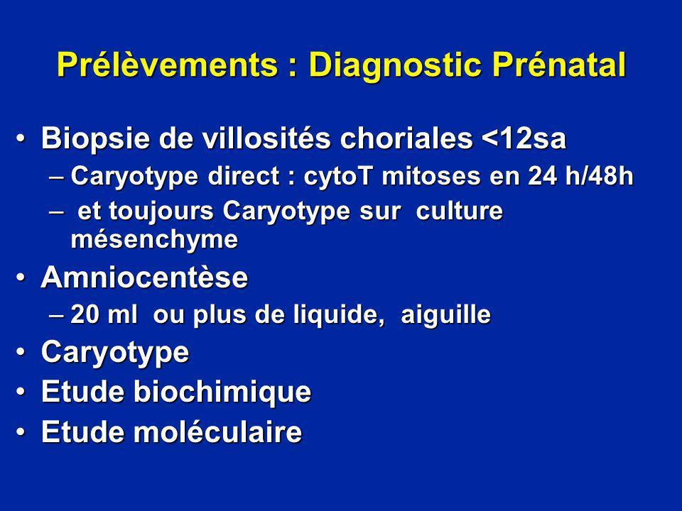Prélèvements : Diagnostic Prénatal Biopsie de villosités choriales <12saBiopsie de villosités choriales <12sa –Caryotype direct : cytoT mitoses en 24