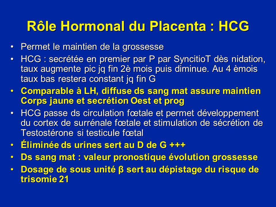 Rôle Hormonal du Placenta : HCG Permet le maintien de la grossessePermet le maintien de la grossesse HCG : secrétée en premier par P par SyncitioT dès
