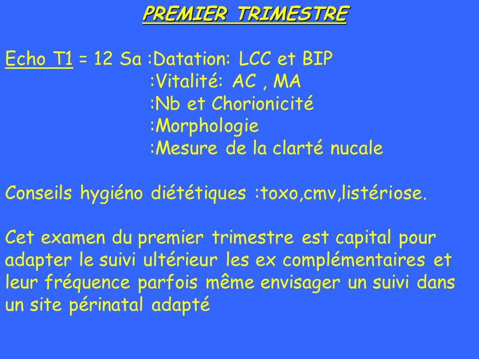 PREMIER TRIMESTRE Echo T1 = 12 Sa :Datation: LCC et BIP :Vitalité: AC, MA :Nb et Chorionicité :Morphologie :Mesure de la clarté nucale Conseils hygién