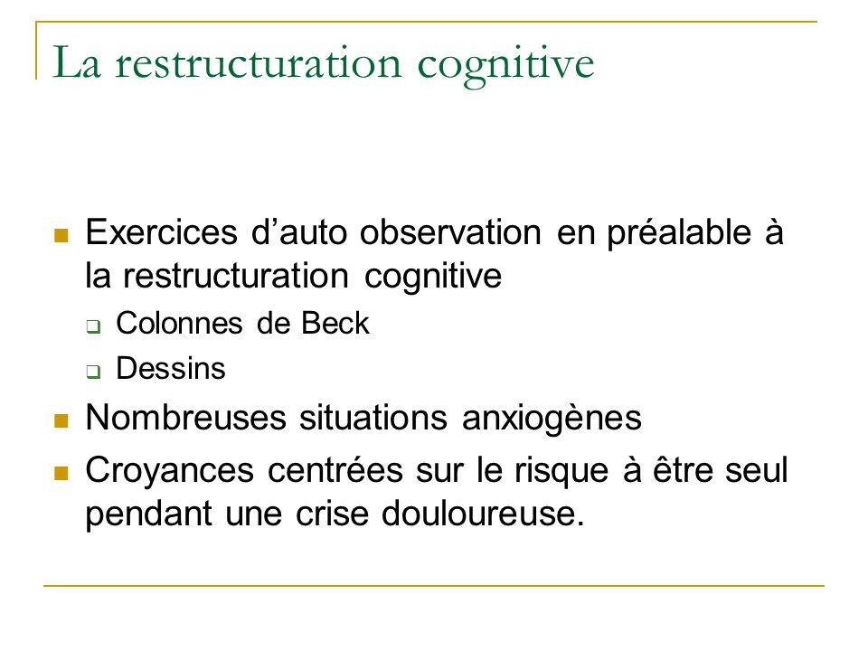 La restructuration cognitive Exercices dauto observation en préalable à la restructuration cognitive Colonnes de Beck Dessins Nombreuses situations an