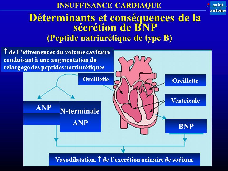 INSUFFISANCE CARDIAQUE Oreillette Ventricule BNP ANP N-terminale ANP Vasodilatation, de lexcrétion urinaire de sodium de l étirement et du volume cavitaire conduisant à une augmentation du relargage des peptides natriurétiques Déterminants et conséquences de la sécrétion de BNP (Peptide natriurétique de type B)