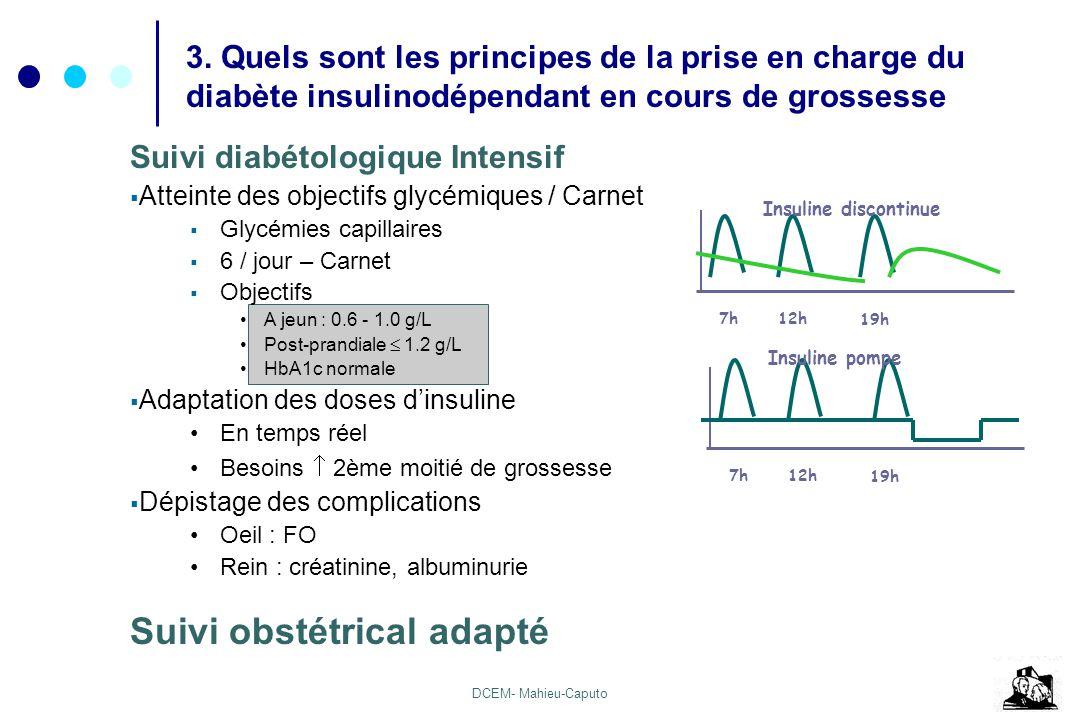 DCEM- Mahieu-Caputo Suivi diabétologique Intensif Atteinte des objectifs glycémiques / Carnet Glycémies capillaires 6 / jour – Carnet Objectifs A jeun