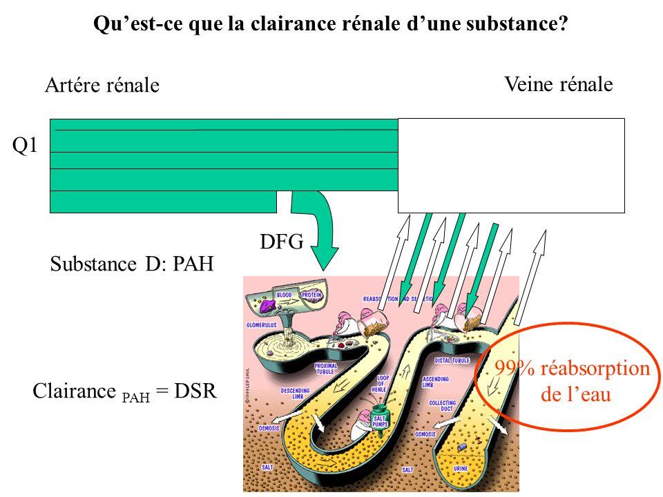 Q1 Q Artére rénale 99% réabsorption de leau Veine rénale DFG Substance D: PAH Clairance PAH = DSR Quest-ce que la clairance rénale dune substance?
