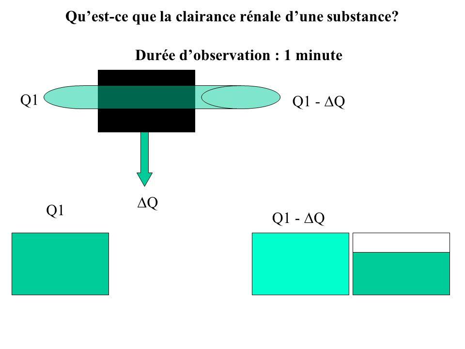 Durée dobservation : 1 minute Q1 Q1 - Q Q Q1 Q1 - Q Quest-ce que la clairance rénale dune substance?