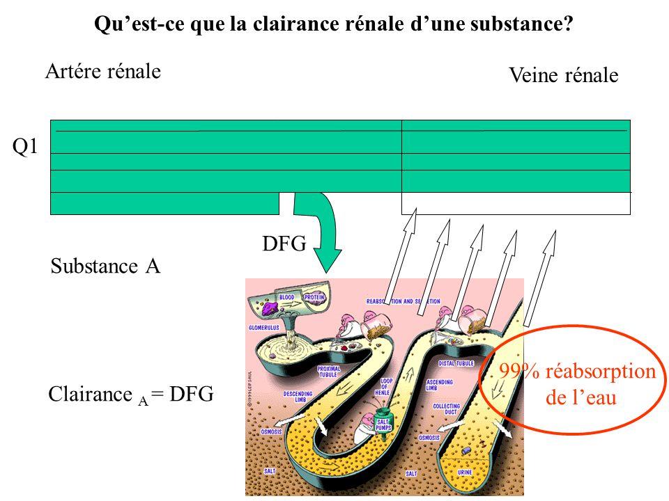 Q1 Q Artére rénale 99% réabsorption de leau Veine rénale DFG Substance A Clairance A = DFG Quest-ce que la clairance rénale dune substance?