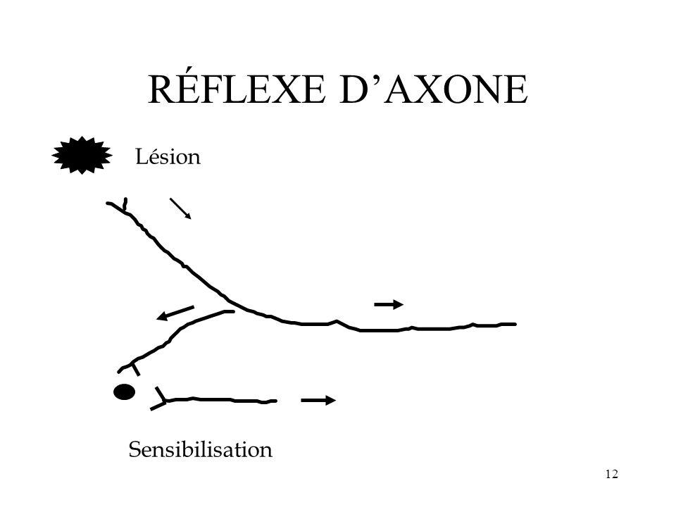 12 RÉFLEXE DAXONE Lésion Sensibilisation