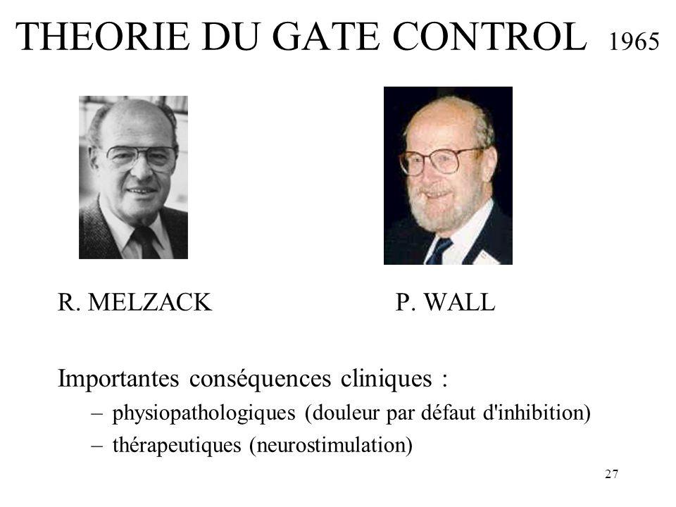 27 THEORIE DU GATE CONTROL 1965 R. MELZACK P. WALL Importantes conséquences cliniques : –physiopathologiques (douleur par défaut d'inhibition) –thérap