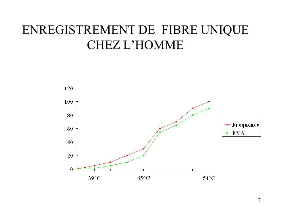 28 ENREGISTREMENT dune CELLULE de la COUCHE V c/sec __________ Stimulation nociceptive