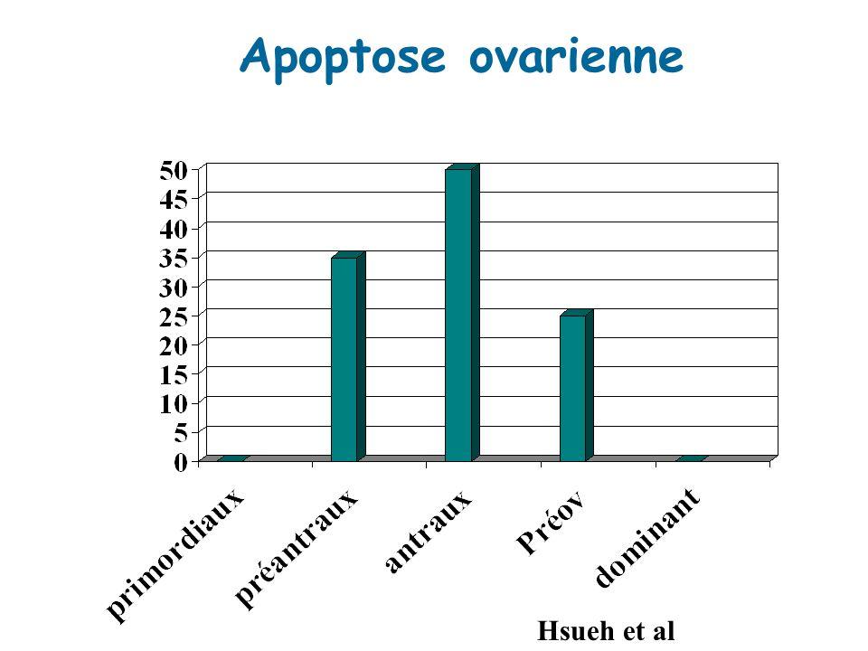 Apoptose ovarienne Hsueh et al