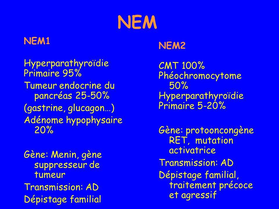NEM NEM1 Hyperparathyroïdie Primaire 95% Tumeur endocrine du pancréas 25-50% (gastrine, glucagon…) Adénome hypophysaire 20% Gène: Menin, gène suppress