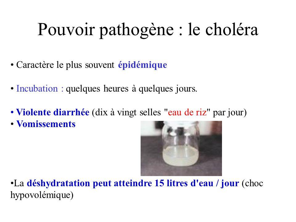 Pouvoir pathogène : le choléra Caractère le plus souvent épidémique Incubation : quelques heures à quelques jours. Violente diarrhée (dix à vingt sell