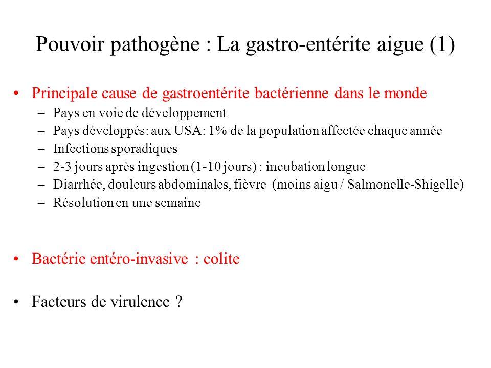 Pouvoir pathogène : La gastro-entérite aigue (1) Principale cause de gastroentérite bactérienne dans le monde –Pays en voie de développement –Pays développés: aux USA: 1% de la population affectée chaque année –Infections sporadiques –2-3 jours après ingestion (1-10 jours) : incubation longue –Diarrhée, douleurs abdominales, fièvre (moins aigu / Salmonelle-Shigelle) –Résolution en une semaine Bactérie entéro-invasive : colite Facteurs de virulence ?