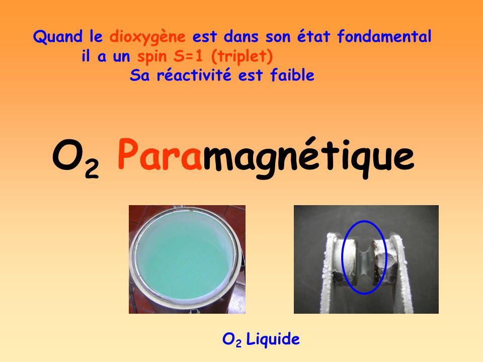O 2 Paramagnétique O 2 Liquide Quand le dioxygène est dans son état fondamental il a un spin S=1 (triplet) Sa réactivité est faible
