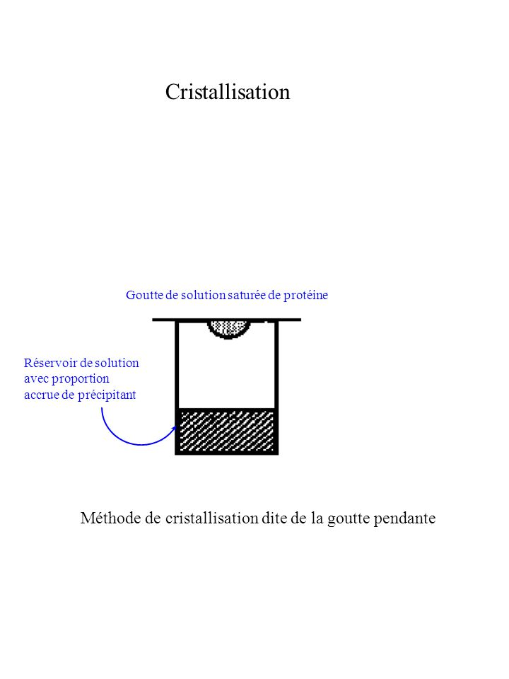 Amélioration des phases : Modification de densité En principe : meilleure carte, mais attention à bien définir la frontière protéine/solvant Résultat : Tiré de : http://www.ccp4.ac.uk/talks 56 Carte initiale :