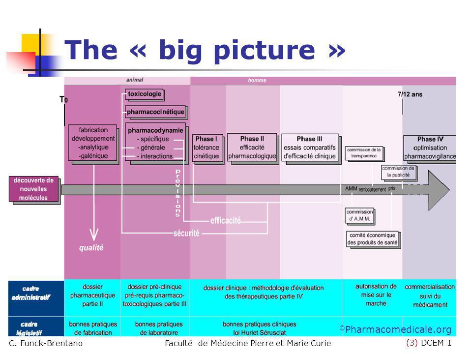 (3) DCEM 1 C. Funck-BrentanoFaculté de Médecine Pierre et Marie Curie The « big picture » © Pharmacomedicale.org