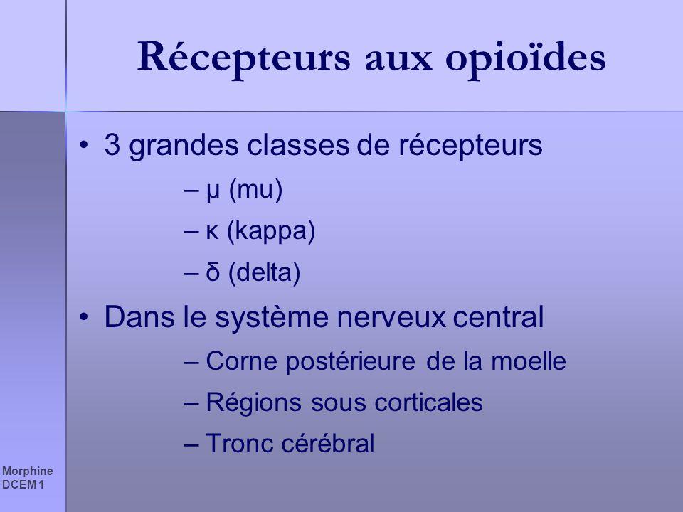 Morphine DCEM 1 Récepteurs aux opioïdes 3 grandes classes de récepteurs –µ (mu) –κ (kappa) –δ (delta) Dans le système nerveux central –Corne postérieu