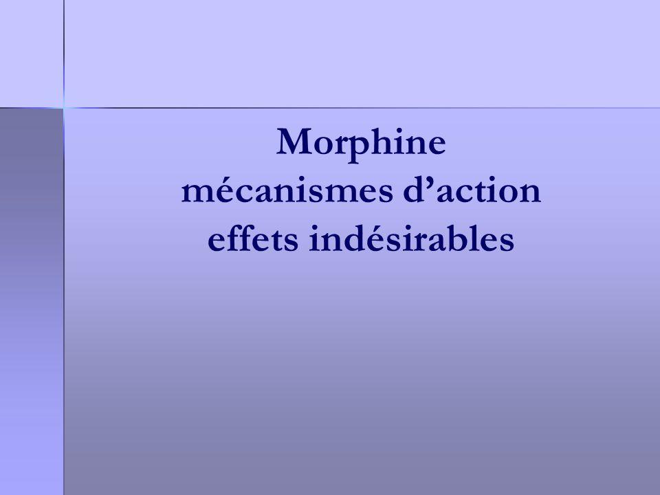 Morphine mécanismes daction effets indésirables