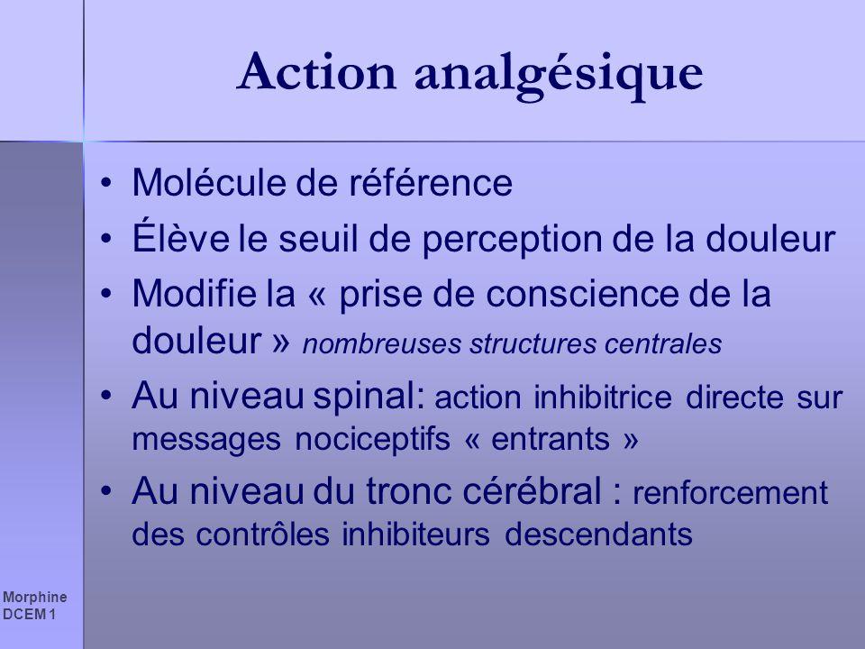 Morphine DCEM 1 Action analgésique Molécule de référence Élève le seuil de perception de la douleur Modifie la « prise de conscience de la douleur » n