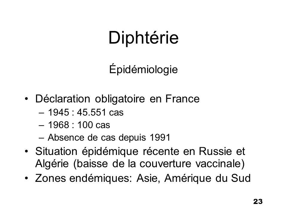 23 Diphtérie Épidémiologie Déclaration obligatoire en France –1945 : 45.551 cas –1968 : 100 cas –Absence de cas depuis 1991 Situation épidémique récen