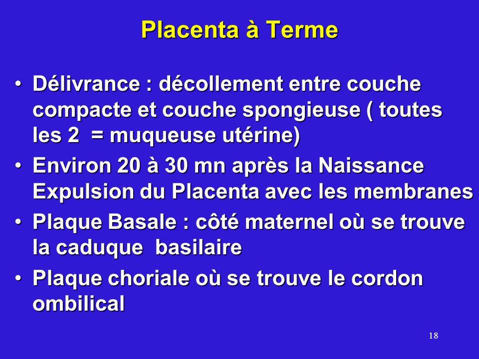 18 Placenta à Terme Délivrance : décollement entre couche compacte et couche spongieuse ( toutes les 2 = muqueuse utérine)Délivrance : décollement entre couche compacte et couche spongieuse ( toutes les 2 = muqueuse utérine) Environ 20 à 30 mn après la Naissance Expulsion du Placenta avec les membranesEnviron 20 à 30 mn après la Naissance Expulsion du Placenta avec les membranes Plaque Basale : côté maternel où se trouve la caduque basilairePlaque Basale : côté maternel où se trouve la caduque basilaire Plaque choriale où se trouve le cordon ombilicalPlaque choriale où se trouve le cordon ombilical