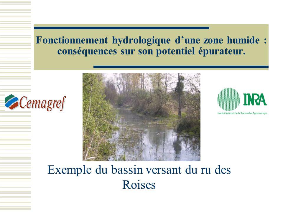 Fonctionnement hydrologique dune zone humide : conséquences sur son potentiel épurateur. Exemple du bassin versant du ru des Roises