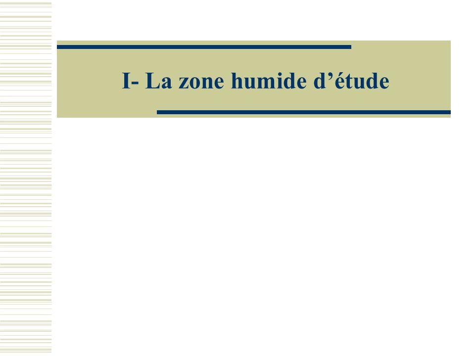 I- La zone humide détude
