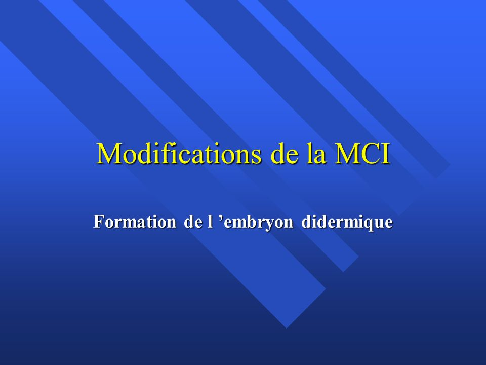 Modifications de la MCI Formation de l embryon didermique