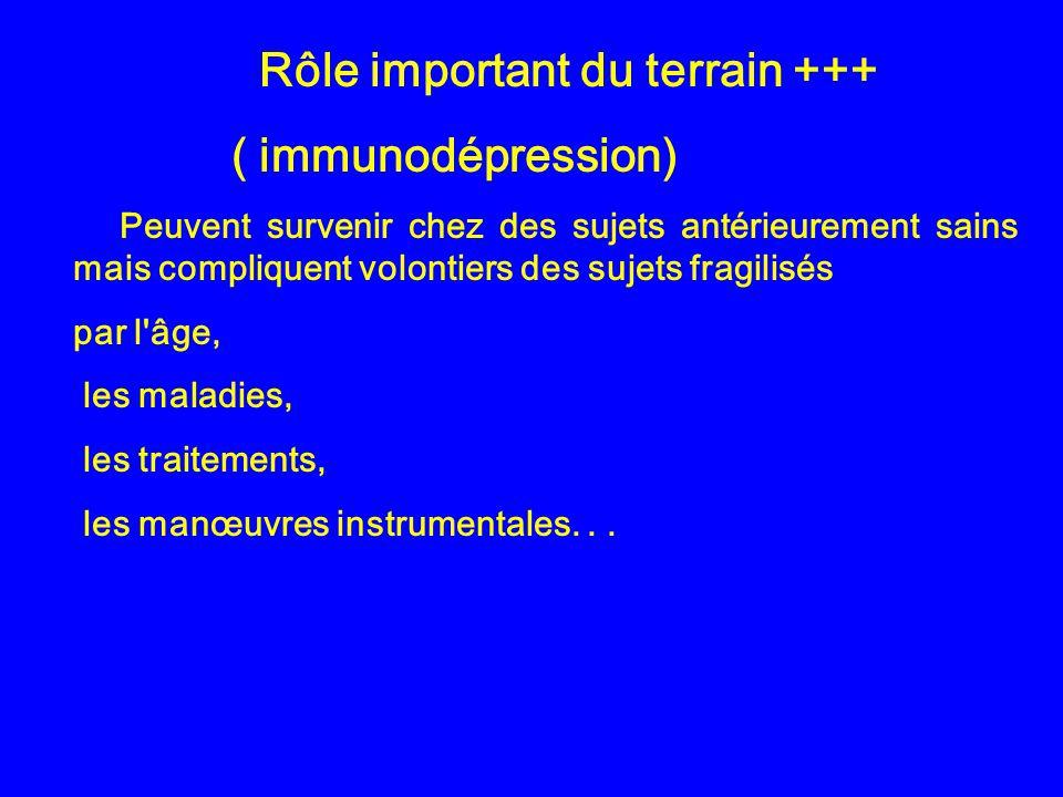 Rôle important du terrain +++ ( immunodépression) Peuvent survenir chez des sujets antérieurement sains mais compliquent volontiers des sujets fragili