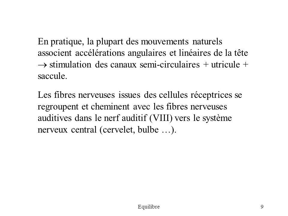 Equilibre9 En pratique, la plupart des mouvements naturels associent accélérations angulaires et linéaires de la tête stimulation des canaux semi-circ