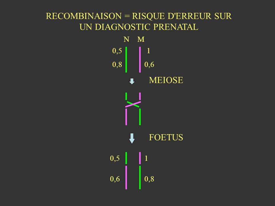 RECOMBINAISON = RISQUE D'ERREUR SUR UN DIAGNOSTIC PRENATAL NM MEIOSE FOETUS 0,5 0,8 1 0,6 1 0,8 0,5 0,6