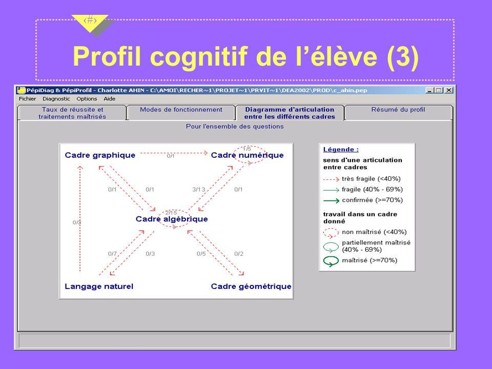 Nov 2001 13 Profil cognitif de lélève (3)