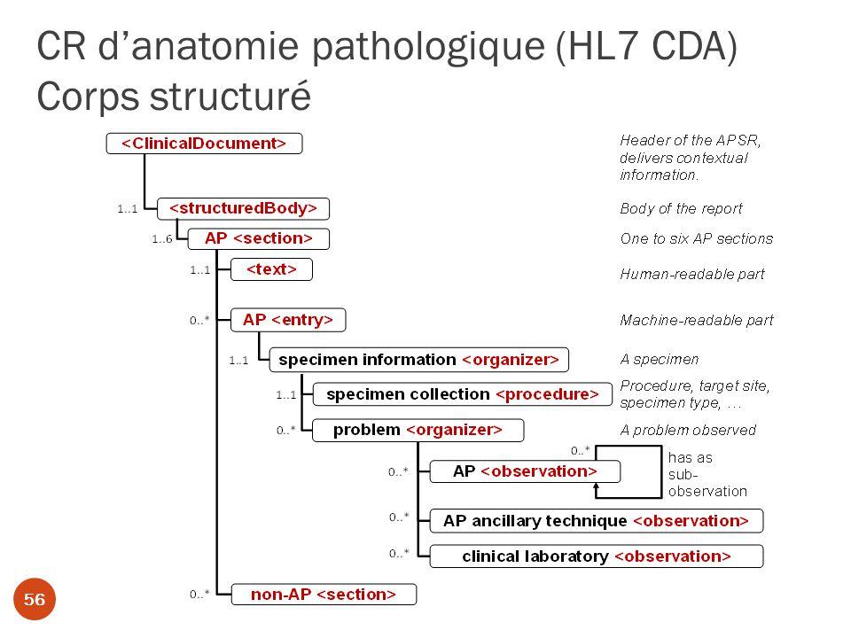 CR danatomie pathologique (HL7 CDA) Corps structuré 56