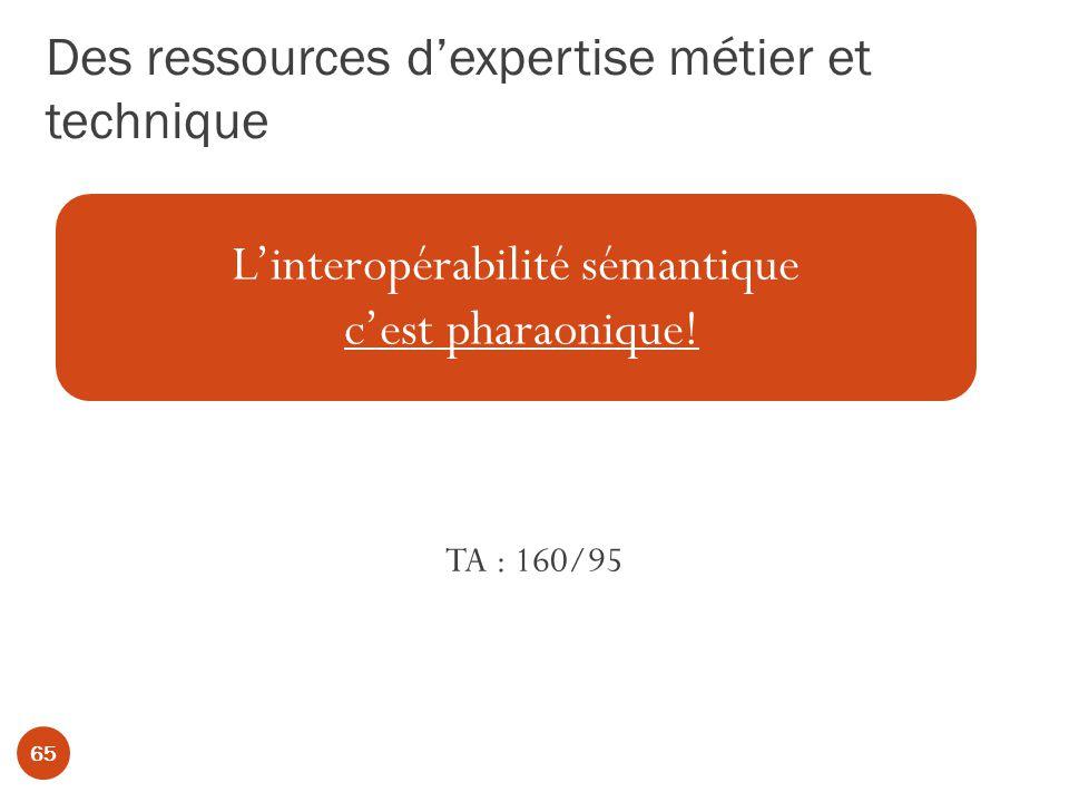 Des ressources dexpertise métier et technique TA : 160/95 Linteropérabilité sémantique cest pharaonique.