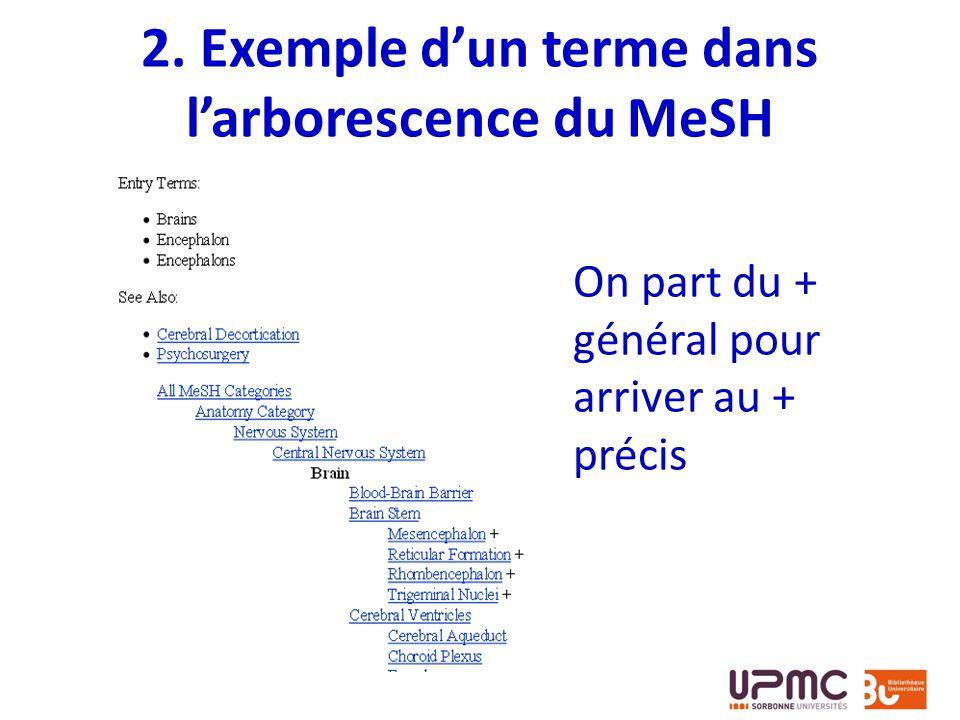 2. Exemple dun terme dans larborescence du MeSH On part du + général pour arriver au + précis