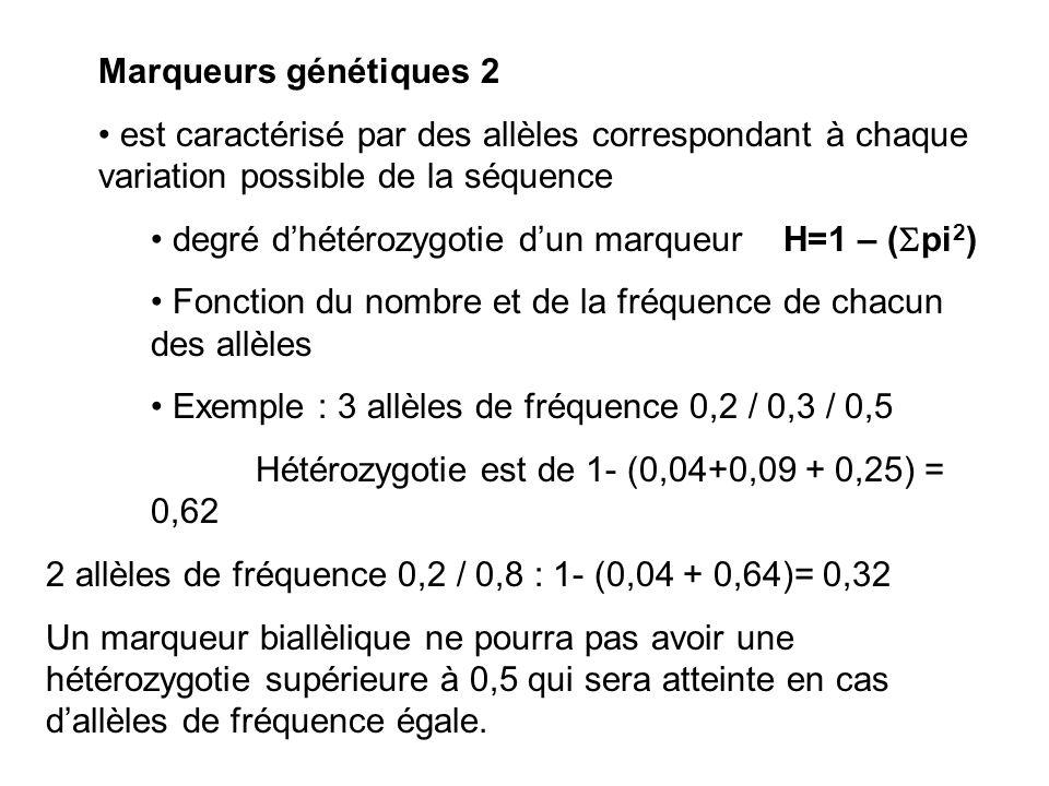 Marqueurs génétiques 2 est caractérisé par des allèles correspondant à chaque variation possible de la séquence degré dhétérozygotie dun marqueur H=1 – ( pi 2 ) Fonction du nombre et de la fréquence de chacun des allèles Exemple : 3 allèles de fréquence 0,2 / 0,3 / 0,5 Hétérozygotie est de 1- (0,04+0,09 + 0,25) = 0,62 2 allèles de fréquence 0,2 / 0,8 : 1- (0,04 + 0,64)= 0,32 Un marqueur biallèlique ne pourra pas avoir une hétérozygotie supérieure à 0,5 qui sera atteinte en cas dallèles de fréquence égale.