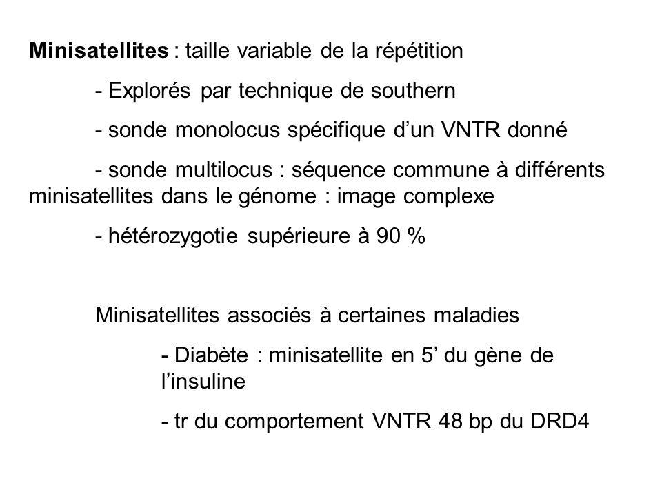Minisatellites : taille variable de la répétition - Explorés par technique de southern - sonde monolocus spécifique dun VNTR donné - sonde multilocus : séquence commune à différents minisatellites dans le génome : image complexe - hétérozygotie supérieure à 90 % Minisatellites associés à certaines maladies - Diabète : minisatellite en 5 du gène de linsuline - tr du comportement VNTR 48 bp du DRD4