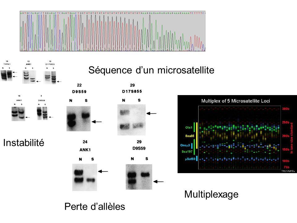 Perte dallèles Multiplexage Séquence dun microsatellite Instabilité