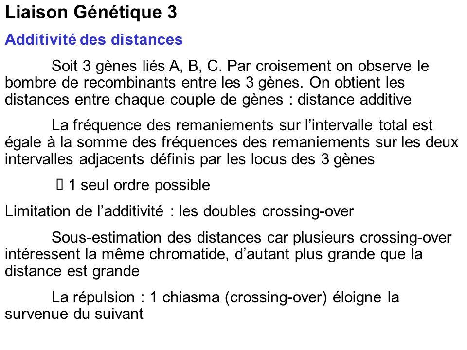 Liaison Génétique 3 Additivité des distances Soit 3 gènes liés A, B, C.